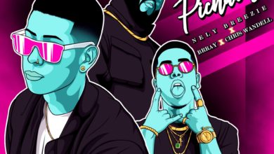 Photo of Nely Breezie Ft. Brray y Chris Wandell – Me Pichabas